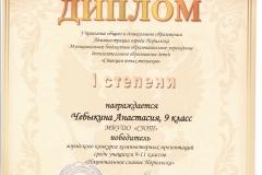 Чебыкина Анастасия 1 степень